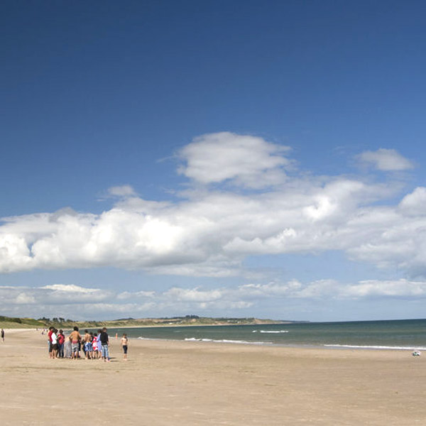 curracloe beach wexford discovery tours